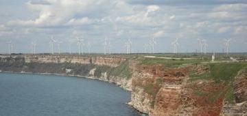 カリアクラ半島写真提供:(c) rspb-images.com