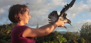 ルーシー・フォルキエ セグロシロハラミズナギドリを放鳥写真提供:Matthieu Aureau