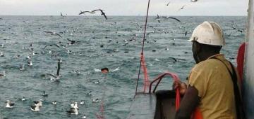 海鳥の混獲をなくすためにナミビアの漁船で使われている'トリポール'写真提供:J Paterson