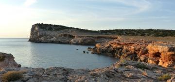 コニリェラ島(スペイン)写真提供: J.M. Arcos