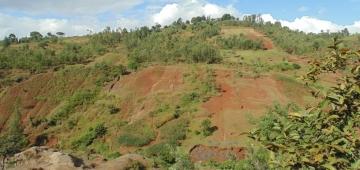 不適切な土地利用は気候変動の影響に対してランドスケープをより脆弱にしてしまう 写真提供: Albert Schen