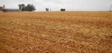 '農業生態系に依存している種や生息環境は一般査定よりも状況が悪くなっています。'とEEA(欧州環境機関)の報告書に述べられています。写真提供: Pierre Commenville