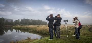 オランダ、フリースランド州のレーワルデルボス(地名)で野鳥観察をするバードウォッチャー。'欧州バードウォッチ'は科学者も一般のバーダーも参加するイベントです。 写真提供: Wietze Landman