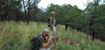 アリゾナ州チリカワ山脈でモニタリングを行う受託者 写真提供: Jennie MacFarland, Tucson Audubon Society